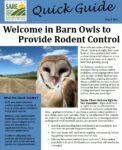 Barn Owl quick guide