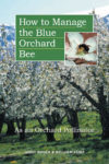 Blue-Orchard-Bee.jpg