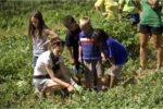 Farm to School farm tour