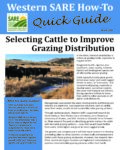 Cover to Selecting Cattle to Improve Grazing Distribution