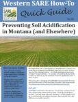 Soil Acidity Guide